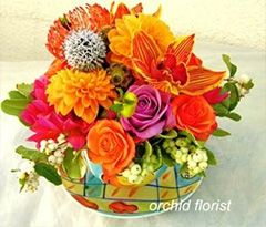 Birthday Flower and Gifts - Orchid Florist