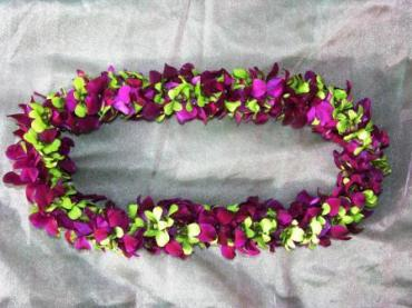 Orchid Lei- chartreuse and solid purple