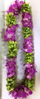 Orchids Lei - Pink and chartreuse