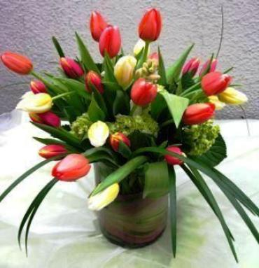 Easter\'s Early Splendor